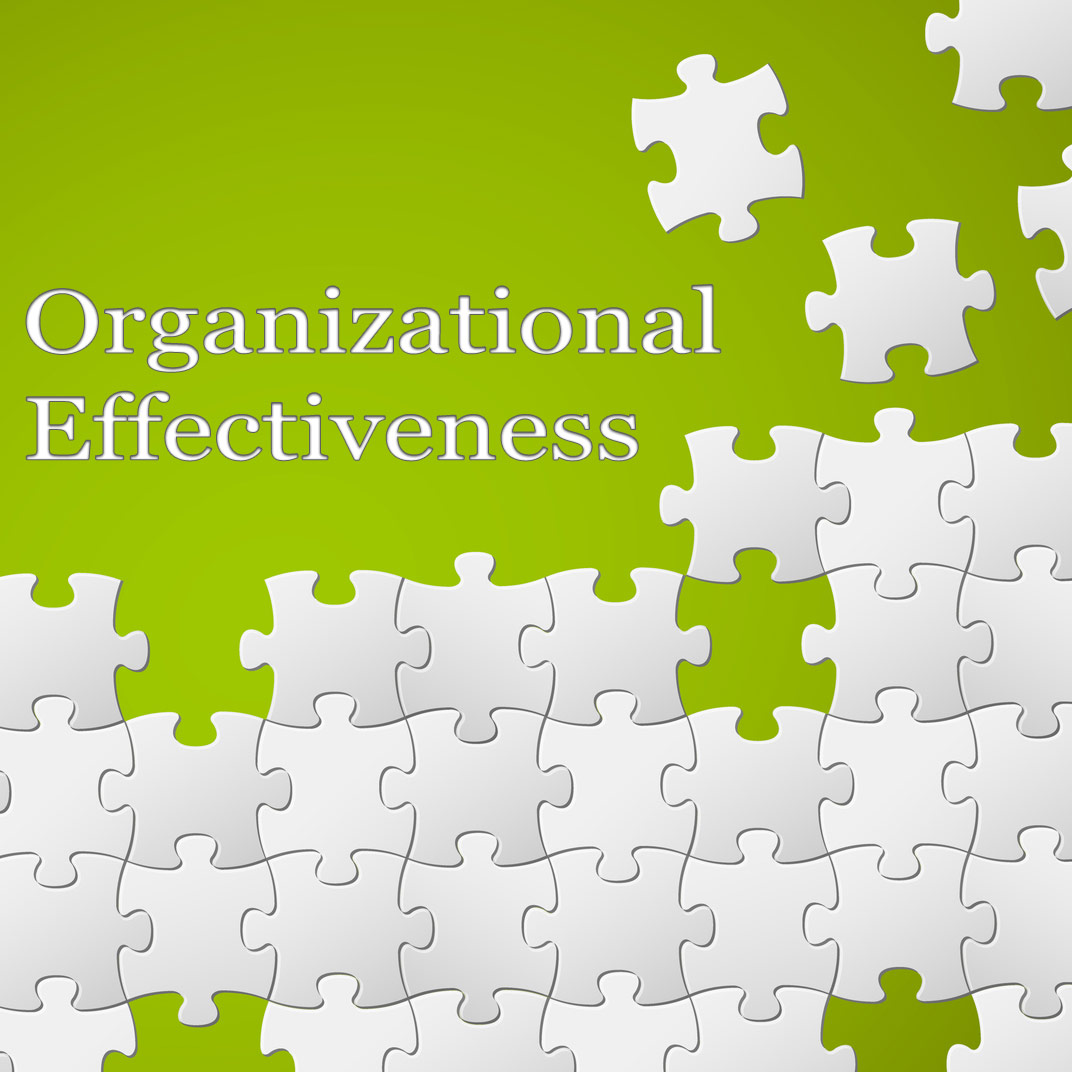 organizational effectiveness The main measure of organizational effectiveness for a business will generally be expressed in terms of how well its net profitability compares with its target profitability.